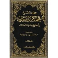 جهود الشيخ محمد الأمين الشنقيطي