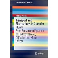 Transport and Fluctuations in Granular Fluids